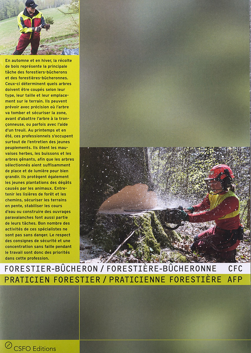 Reportage sur le métier de bûheron pour le CSFO. © Thierry Porchet