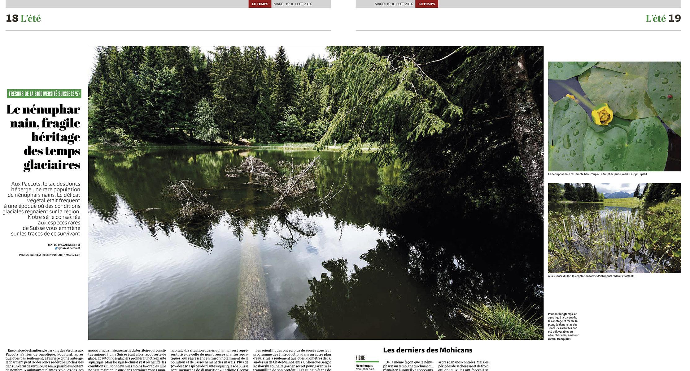 Double page à la recherche du nénuphar nain / ©Thierry Porchet
