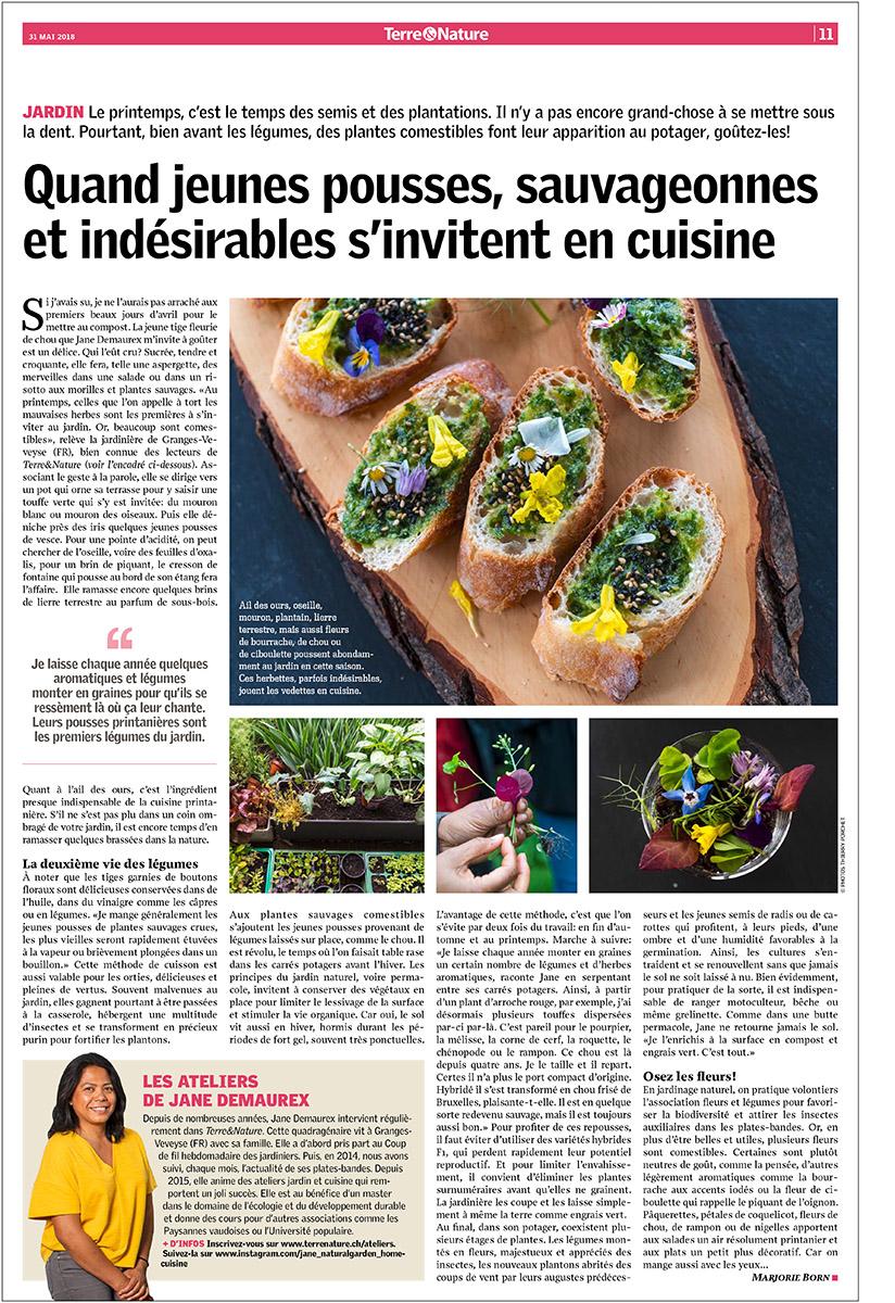 cuisine du jardin pour terre et nature